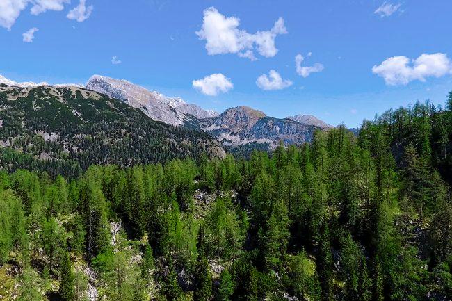 Planina Ovcarija, view towards Vogel