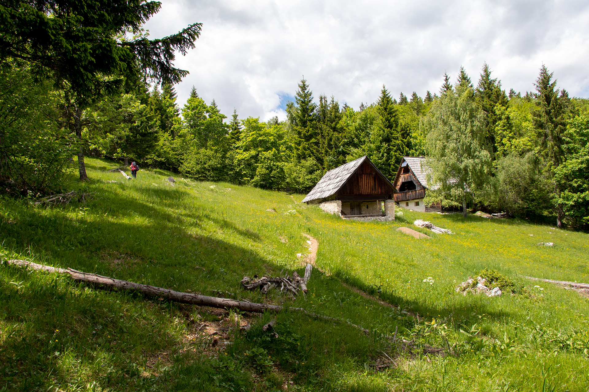 Small forest village in the Julian Alps