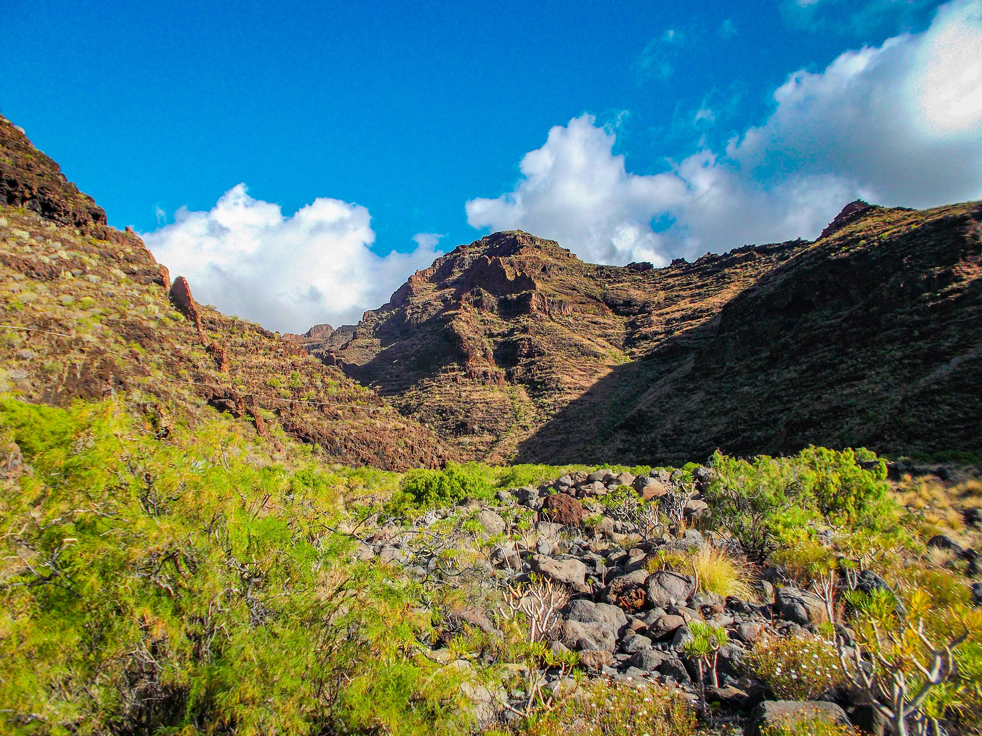 la gomera nature pure