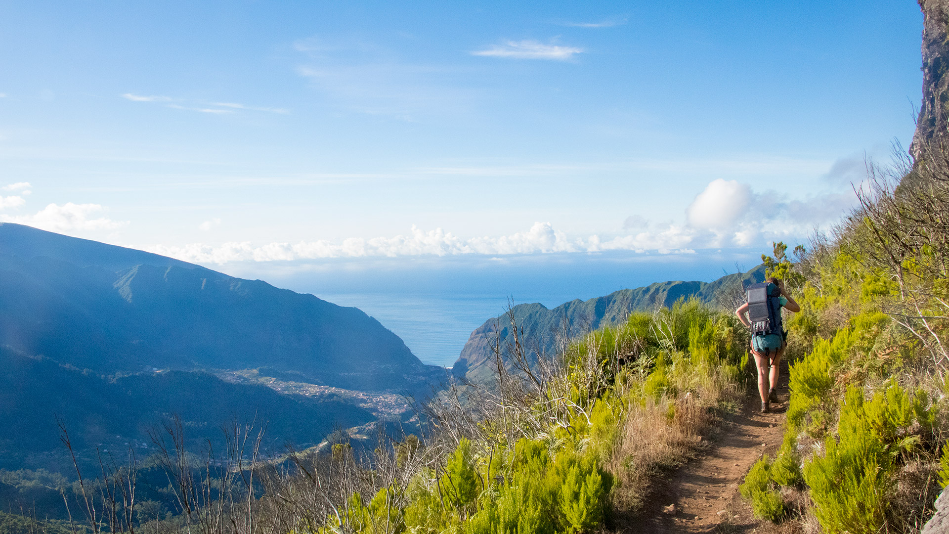 madeira hiking path trail
